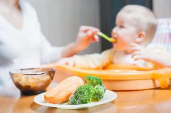 Masozeleninové příkrmy